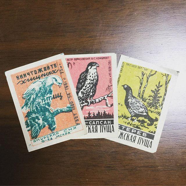 phillumenistsbirds#マッチラベル #束の舎 #tsukanosha #つかのしゃ #brocante #三鷹 #Mitaka #ブロカント #古道具 #がらくた #レトロ #蚤の市 #stamp #切手 #ephemera #古切手 #紙もの #古いもの #アジ紙 #味紙 #scrapbook #スクラップブッキング #コラージュ #collage #vintage #junkjournal #balletjournal - from Instagram