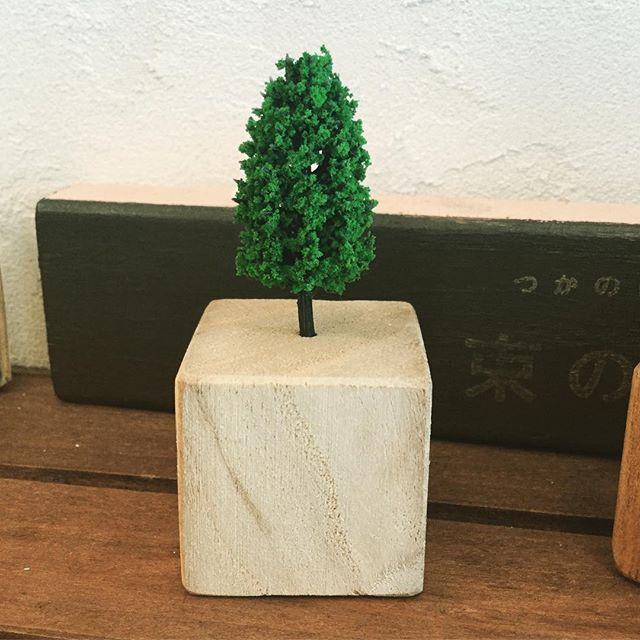 """小さな木の置物をお店に出しました。 """"tiny tree ornament"""" at BROCCA mitaka#束の舎 #tsukanosha #三鷹 #雑貨 #木 #置物 #brocca #デスクにオアシスを - from Instagram"""