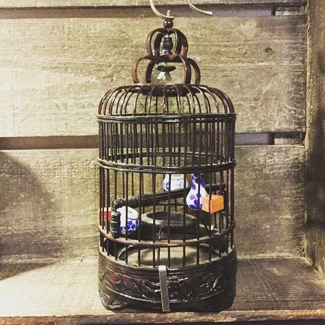 small bird cage from Hongkongインテリアに素敵です#束の舎 #tsukanosha #つかのしゃ #東京 #三鷹 #Mitaka #武蔵野 #雑貨 #ブロカント #がらくた #レトロ #素敵 #鳥かご #birdcage - from Instagram